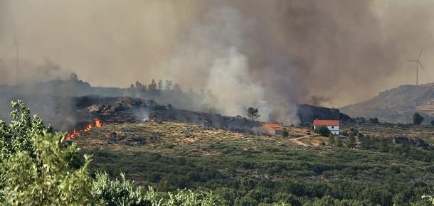 Moita – Sabugal: Incêndio lavra zona de mato