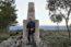 Vale de Espinho: K50 … recebendo a Primavera nas terras da Raia